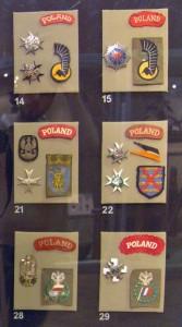 Oznaki 1 Dywizji Pancernej