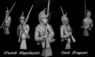 French Napoleonic Foot Dragoon