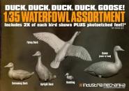 Waterfowl Assortment