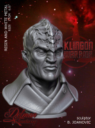 Klingon Warrior