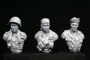 Vietnam v-bust set