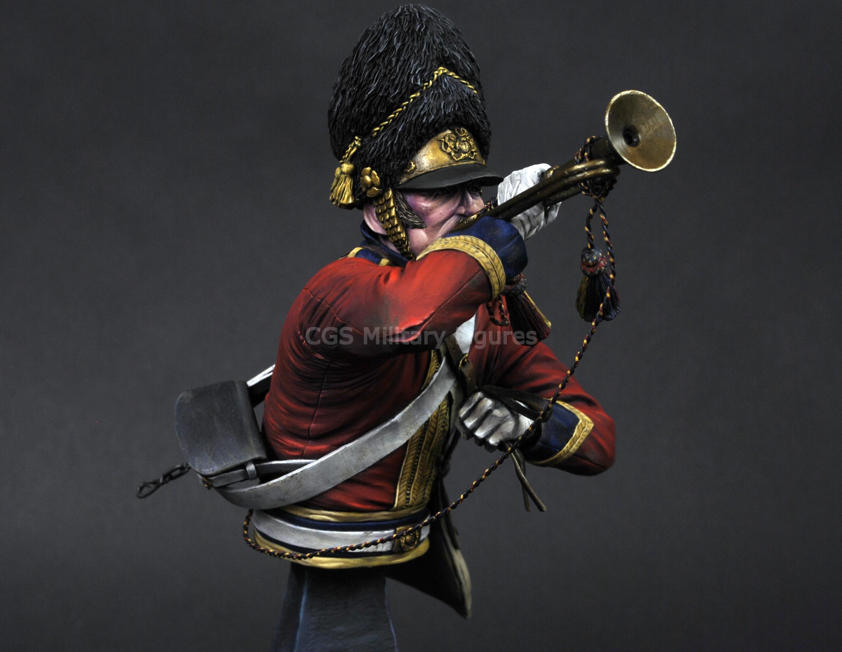 Scots Grey Trumpeter