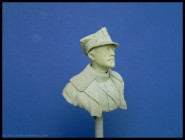Generał Haller