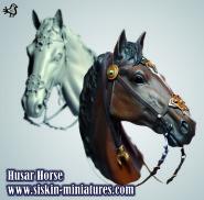Husar's horse head