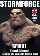 SF1001 top
