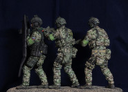 Assault group