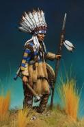 Warrior plains