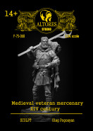 Veteran Medieval Mercenary